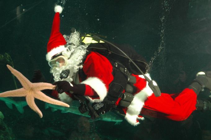 Scuba Claus_Vancouver Aquarium