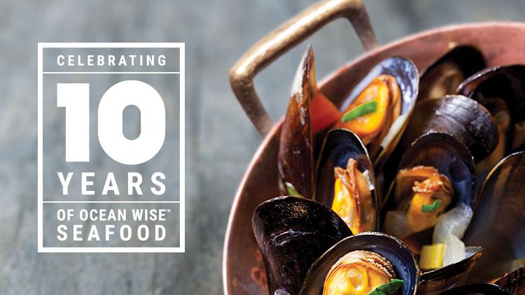 Ocean Wise 10 Years