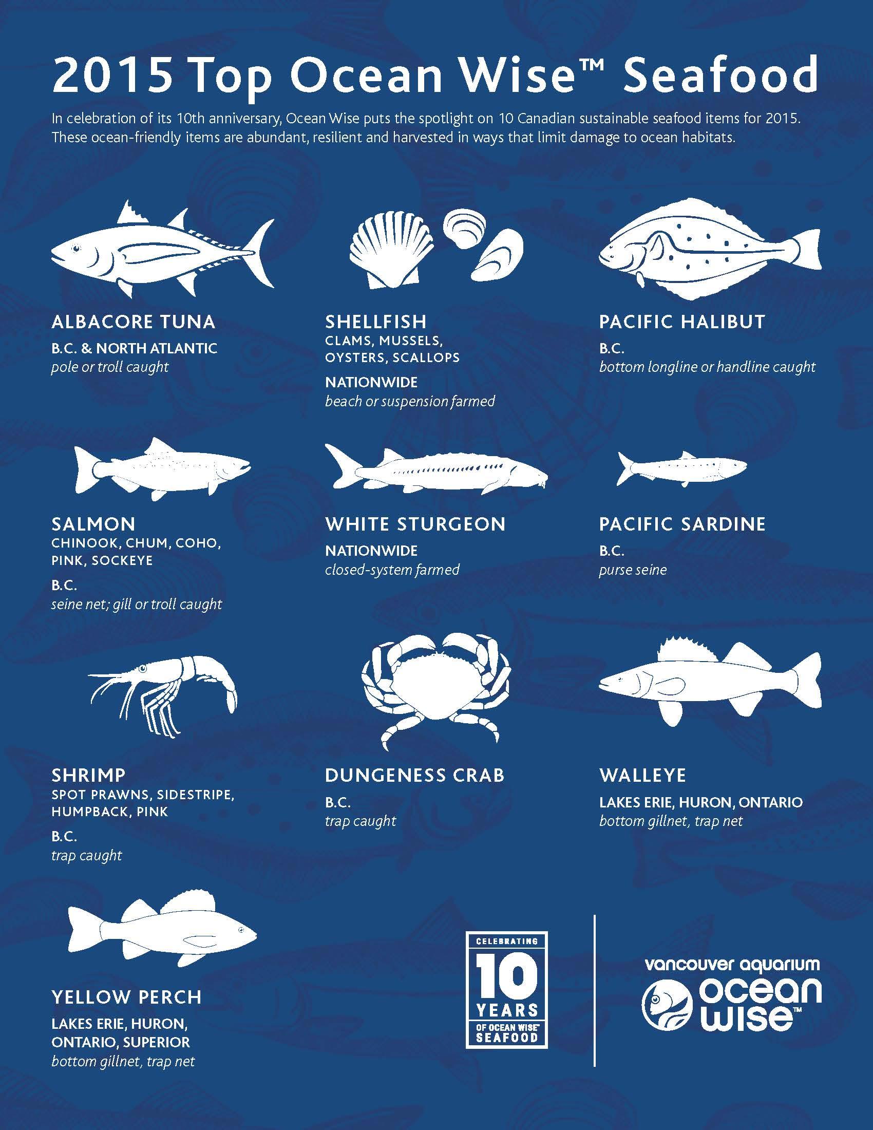 Oceanwise top ten seafood